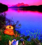 4大度假村品美味虹鳟鱼