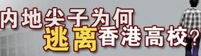 尖子生为何逃离香港高校