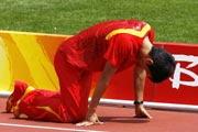 刘翔,飞人,110米栏