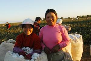 20年10万河南人万里赴新疆摘棉