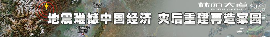 地震经济影响,汶川,汶川灾情,地震,四川地震,灾区,温总理,胡锦涛