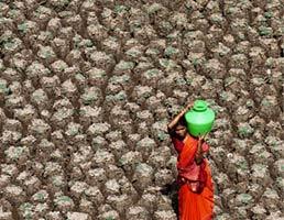 印度干旱的湖区