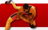 国际摔跤协会,亚运会摔跤