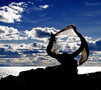 西藏 去世界尽头看冷酷仙境
