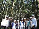 森林考察队合影